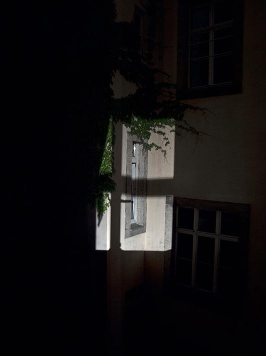 Bautzner Straße 51, 01099 Dresden